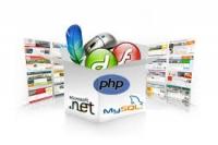 Các loại website phổ biến trên thế giới ngày nay